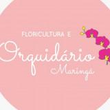 Floricultura e Orquidário Maringá